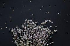 Blumenstrau? des Lavendels auf einem schwarzen Hintergrund lizenzfreies stockbild