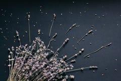 Blumenstrau? des Lavendels auf einem schwarzen Hintergrund stockfotografie