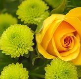 Blumenstrauß-Makro Lizenzfreie Stockfotografie