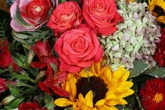 Blumenstrauß von frischen Sommer-Blumen Lizenzfreies Stockfoto