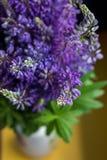 Blumenstrauß von Lupineblumen in einem Vase Lizenzfreies Stockbild