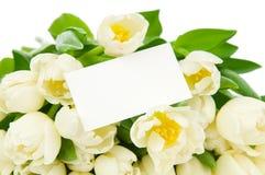 Blumenstrauß von Tulpen Lizenzfreie Stockbilder