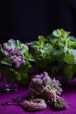 Blumenstrauß von wohlriechenden Kräutern Minze und Thymian Die Art der Dunkelheit Lizenzfreie Stockbilder