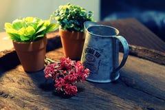 Blumentöpfe auf einem hölzernen Behälter Stockfotos