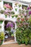 Blumentöpfe, die in einem andalusischen Patio stehen. Lizenzfreie Stockfotos