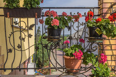 Blumentöpfe mit den Blumen, die am Schmiedeeisengrill der Terrasse hängen lizenzfreies stockfoto