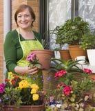Blumentöpfe und Frau Stockbild