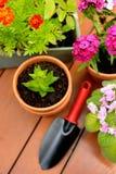 Blumentöpfe und Schaufeltopf im grünen Garten Stockbild