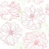Blumentapete mit Mohnblumeblumen Stockbild