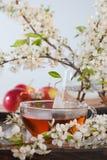 Blumentee Lizenzfreie Stockbilder