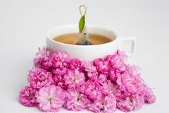 Blumentee Lizenzfreies Stockbild