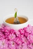 Blumentee Lizenzfreie Stockfotografie