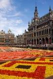 Blumenteppich in Brüssel lizenzfreies stockbild