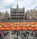 Blumenteppich 2014 in Brüssel Lizenzfreies Stockfoto