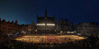 Blumenteppich in Brüssel, Belgien Stockfoto