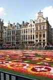 Blumenteppich in Brussles lizenzfreies stockfoto