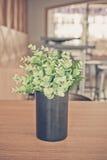 Blumentopf auf dem Hintergrund Stockfoto