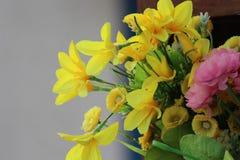 Blumentopf auf dem Hintergrund Lizenzfreie Stockfotos