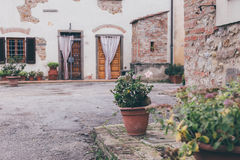 Blumentopf auf dem Portal eines italienischen alten Hauses in Toskana Stockbild