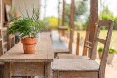 Blumentopf auf dem Tisch Lizenzfreie Stockbilder