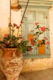 Blumentopf durch alte Schale malte Fenster Griechedorf Stockbilder