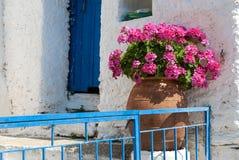 Blumentopf in Griechenland Lizenzfreies Stockbild