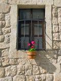 Blumentopf unter dem Fenster Stockfotografie