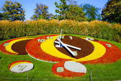 Blumenuhr in Genf, die Schweiz Lizenzfreie Stockbilder
