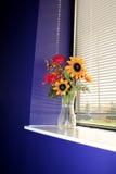 Blumenvase in einem Fenster stockfoto