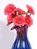 Blumenvase mit rosafarbenen Gänseblümchenblumen Lizenzfreie Stockfotos