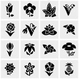 Blumenvektorikonen eingestellt auf Grau Stockfotografie
