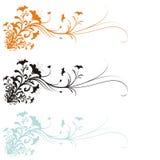 Blumenverzierung vektor abbildung