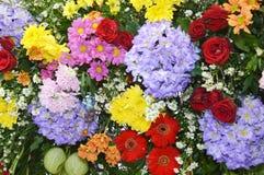 Blumenverzierung Stockbilder