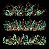 Blumenverzierung von Blumen von schönen Schatten Muster von den Blättern von verschiedenen Anlagen und von Beeren von Lingonberry stockbilder