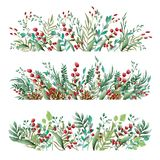 Blumenverzierung von Blumen von schönen Schatten Muster von den Blättern von verschiedenen Anlagen und von Beeren von Lingonberry lizenzfreie stockfotografie