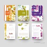 Blumenverzierungs-Vektorbroschürenschablone ENV 10 Stockfotos