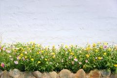 Blumenwand Stockfotos