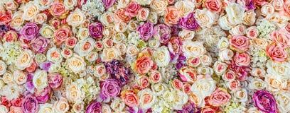 Blumenwandhintergrund mit dem Überraschen von roten und weißen Rosen, Heiratsdekoration stockbild
