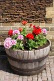 Blumenwanne Lizenzfreies Stockfoto