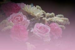 Blumenweichzeichnung Lizenzfreies Stockbild