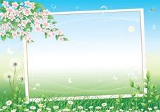 Blumenwiese. lizenzfreie abbildung