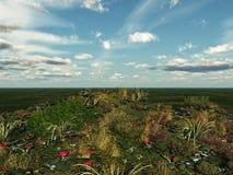 Blumenwiese und Himmel Stockfotos