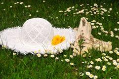 Blumenwiesen-Picknickgarten Lizenzfreies Stockfoto