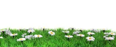 Blumenwiesenfahne Stockfotografie