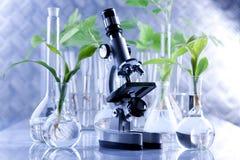 Blumenwissenschaft Lizenzfreie Stockbilder