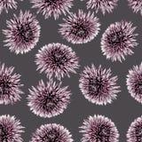 Blumenzeichnung nahtlos stockbilder