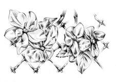Blumenzeichnungs-Skizzenkunst handgemacht Stockbilder