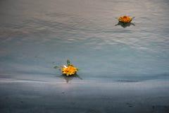 Blumenzubringer Stockfotografie