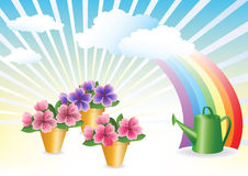 Blumenzucht. Blumenwachsendes. Stockfoto