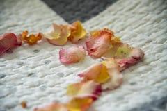 Blumenzusammensetzung: Herd auf dem Bett Lizenzfreie Stockfotos